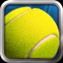 2014 网球大师