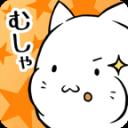 这是猫星人吗?
