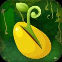 植物――盆栽●━●