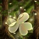 GO Launcher EX Theme 桌面EX主題森林