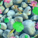 荷塘锦鲤动态壁纸