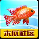 木瓜PaPa鱼