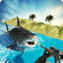 Shark Hunting Deep Dive