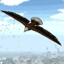 鹰鸟市模拟器2015
