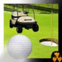 迷你 高尔夫球 世界 冠军