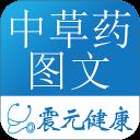 中草药大全(图文)
