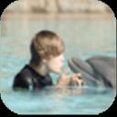 【宝软主题】贾斯汀比伯与海豚