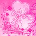 GO桌面粉红色的主题花