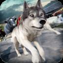 狼 模擬器 2016年 | 有趣 動物 賽跑 遊戲 的 免費