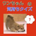 ワンちゃんの気持ちクイズ 可愛い愛犬のしつけの秘訣を学ぶ