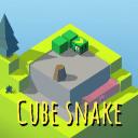 立方体的蛇