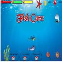 Aquarium Fish Care