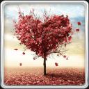 秋天的爱动态壁纸