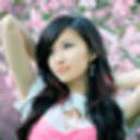 樱花美女主题壁纸