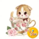 YOO主题-猫萌物语