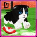 疯狂的小猫模拟器3d