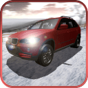 Snow Rally Champion