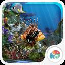 3D水族馆-梦象动态壁纸