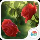 雨中玫瑰-夢象動態壁紙