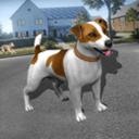 狗模拟器的生活