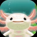 蝾螈育成:Axolotl