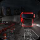 夜卡车司机停车3D