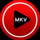 MKV文件播放