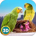City Bird Parrot Simulator 3D