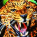 Electrified fierce leopard LWP
