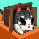 盒子里的猫