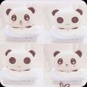 魔秀主题-卖萌的熊猫