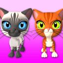 說到三友貓和兔子