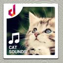 貓的聲音鈴聲