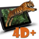 Live Animals  4D Free AR
