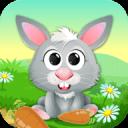 Hungry Rabbit