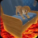地板是熔岩:可爱的小狗疯狂