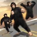 猿世界大战 - 城市生存游戏