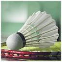 羽毛球运动