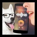 翻译给狗狗的模拟器