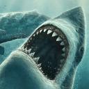 Lwp 移动鲨鱼