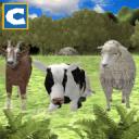 农场动物家庭