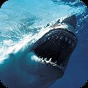 Blue Whale Simulator : Blue Whale VR