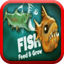 飼養和生長魚