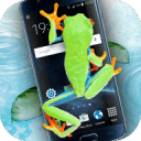 手机屏幕上的青蛙恶作剧