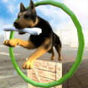 Dog Stunts & Simulator 3D - Crazy Dog Games