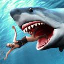 鲨鱼攻击模拟器
