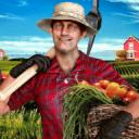 村民虚拟模拟器:真正的乡村生活