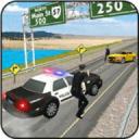 Police Highway Crime Patrol 3D