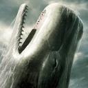 Lwp 虎鲸