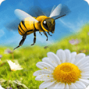 蜜蜂蜂巢模拟器